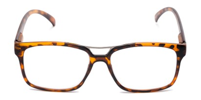 Front of The Geoff in Tortoise
