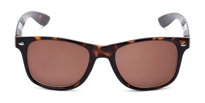 Front of The Guthrie Reading Sunglasses in Tortoise with Amber