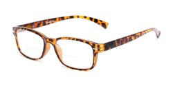 Angle of The Hardy Bifocal in Brown Tortoise, Women's and Men's Retro Square Reading Glasses