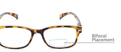 Detail of The Hardy Bifocal in Tan Tortoise