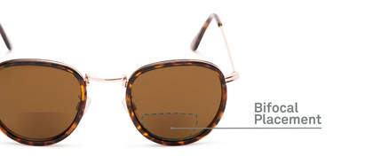 Detail of The Hitch Bifocal Reading Sunglasses in Tortoise/Gold with Amber