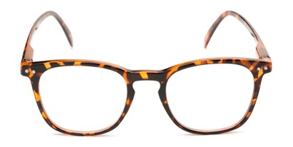 Front of The Homer in Tortoise
