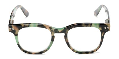 Front of The Hopper in Green/Brown Tortoise