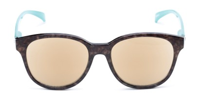 Front of The Isla Reading Sunglasses in Tortoise/Teal with Amber