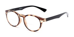 Angle of The Ivy League Bifocal in Brown Tortoise/Black, Women's and Men's Round Reading Glasses