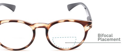 Detail of The Ivy League Bifocal in Brown Tortoise/Black