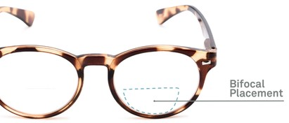 Detail of The Ivy League Bifocal in Brown Tortoise