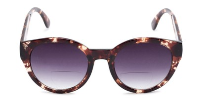 Front of The January Bifocal Reading Sunglasses in Light Tortoise with Smoke