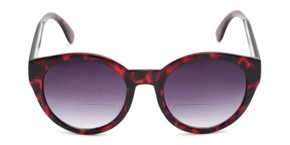 Front of The January Bifocal Reading Sunglasses in Red Tortoise with Smoke