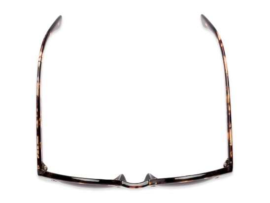 Overhead of The January Bifocal Reading Sunglasses in Light Tortoise with Smoke