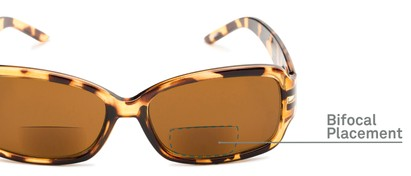 Detail of The Karissa Bifocal Reading Sunglasses in Brown Tortoise with Amber
