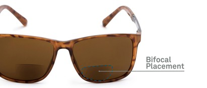 Detail of The Kearney Bifocal Reading Sunglasses in Glossy Tortoise with Amber