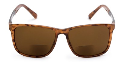 Front of The Kearney Bifocal Reading Sunglasses in Glossy Tortoise with Amber