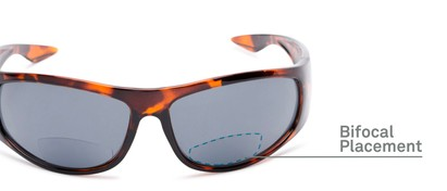 Detail of The Lance Bifocal Reading Sunglasses in Tortoise with Smoke