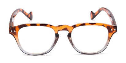 Front of The Landis in Tortoise/Grey