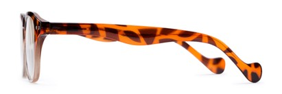 Side of The Landis in Tortoise/Clear