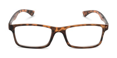 Front of The Leaf in Brown Tortoise