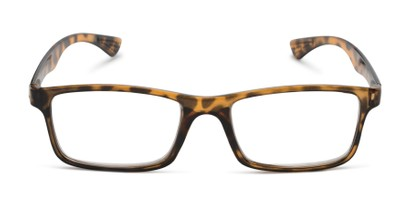 Front of The Leaf in Yellow Tortoise