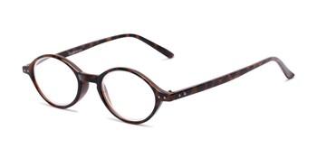 addf296654d 3.00 Reading Glasses and Sunglasses