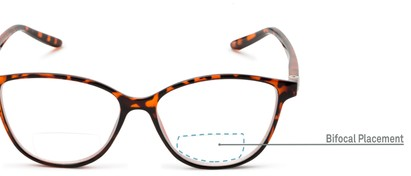 Detail of The Lenora Bifocal in Brown Tortoise