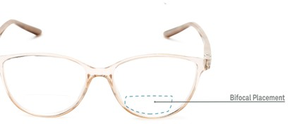 Detail of The Lenora Bifocal in Clear Brown/Tortoise