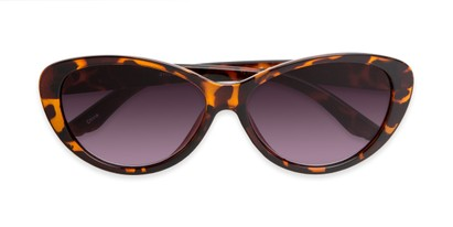 Folded of The Mary Reading Sunglasses in Brown Tortoise with Smoke