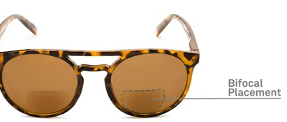 Detail of The Moby Bifocal Reading Sunglasses in Tortoise with Amber