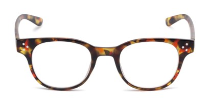Front of The Mulberry in Red Tortoise