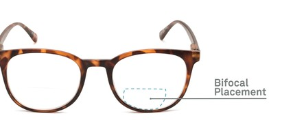 Detail of The Norwich Bifocal in Matte Brown Tortoise