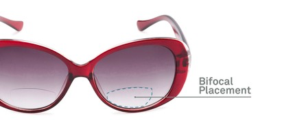Detail of The Olive Bifocal Reading Sunglasses in Red with Smoke