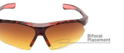 Detail of The Outback Driving Bifocal Reading Sunglasses in Tortoise/Red with Amber