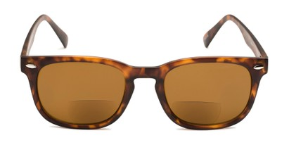 Front of The Patio Bifocal Reading Sunglasses in Tortoise