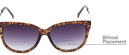 Detail of The Penelope Bifocal Reading Sunglasses in Tortoise/Gold with Smoke