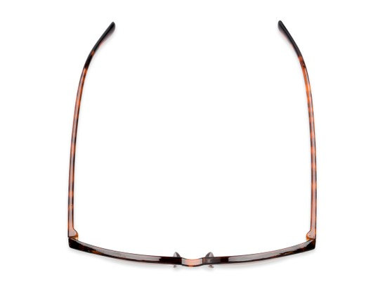 Overhead of The Pepper Reading Sunglasses in Glossy Tortoise/Gold with Amber