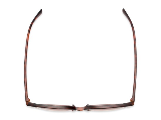 Overhead of The Pepper Reading Sunglasses in Matte Tortoise/Gold with Amber