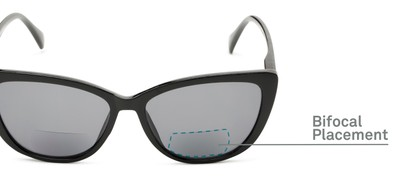 Detail of The Picnic Bifocal Reading Sunglasses in Black with Smoke