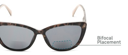 Detail of The Picnic Bifocal Reading Sunglasses in Brown Leopard with Smoke