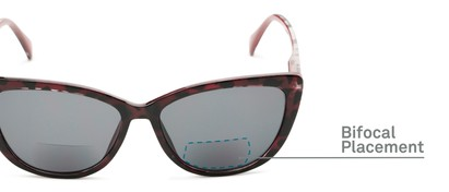 Detail of The Picnic Bifocal Reading Sunglasses in Red Leopard with Smoke