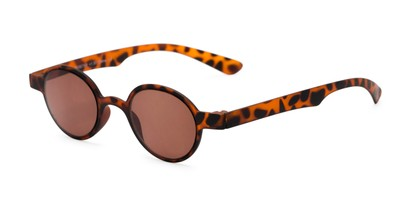 Angle of The Pine Reading Sunglasses in Tortoise with Amber, Women's and Men's Round Reading Sunglasses