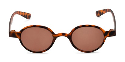 Front of The Pine Reading Sunglasses in Tortoise with Amber