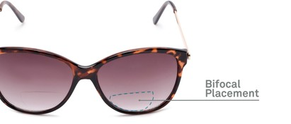 Detail of The Posey Bifocal Reading Sunglasses in Tortoise/Gold with Smoke