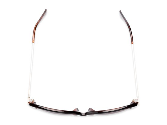Overhead of The Posey Bifocal Reading Sunglasses in Tortoise/Gold with Smoke