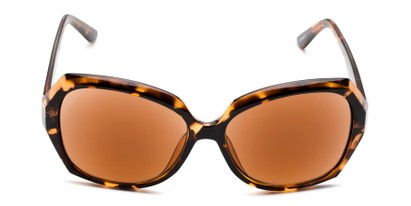 Front of The Alejandra Sun in Tortoise