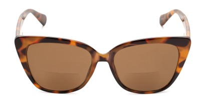 Front of The Alice Bifocal Reading Sunglasses in Brown Tortoise/ Amber