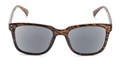 Front of The Borough Reading Sunglasses in Brown Stripe with Smoke