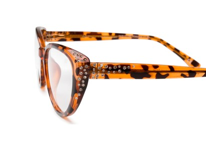 Detail of The Marisol in Tortoise