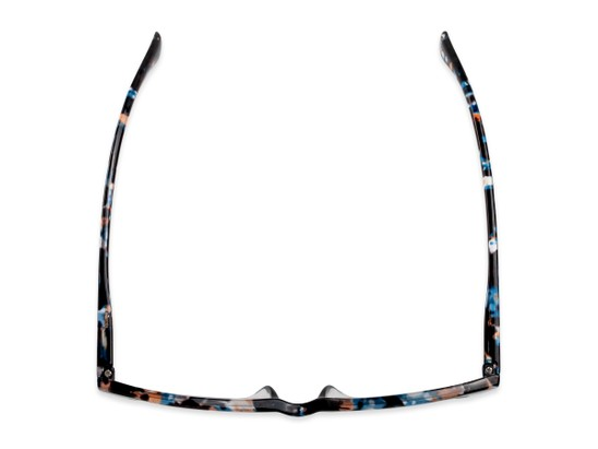 Overhead of The Bonnie in Blue Multi Tortoise