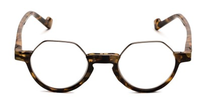 Front of The Piccadilly in Brown Tortoise