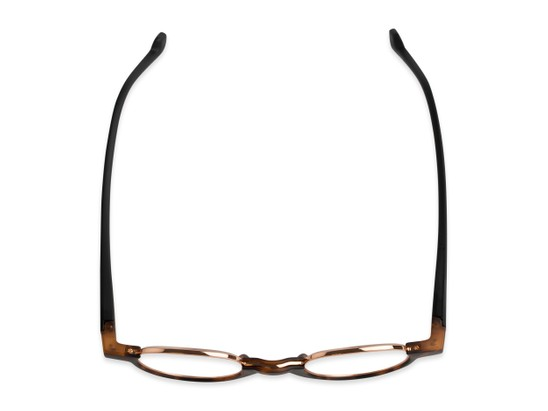 Overhead of The Raegan in Tortoise/Black