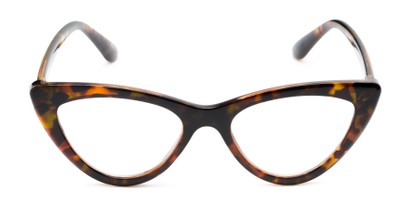 Front of The Robin in Brown Tortoise